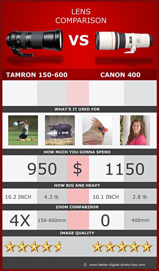 Lens Comparison Tamron 150-600mm vs Canon 400mm Prime Lens