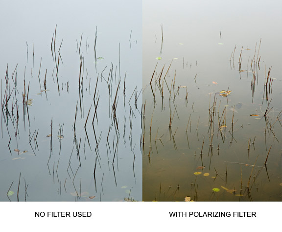 Before and after polarizing filter