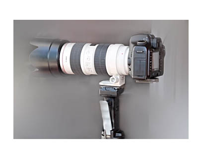 Canon 5D Mark III and 70-200mm f/2.8 lens mounted on a vertical pistol grip tripod head