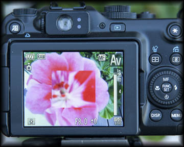 The Canon G11 has a built-in macro focusing loupe to aid in accurate focusing