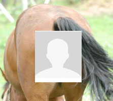 It's a mistake to use a bad linkedin photo that makes you look like a horse's butt