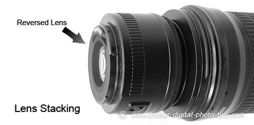 Try lens stacking for your next macro photography equipment choice