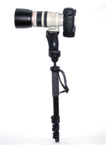 Monopod Evaluations - Monopod with Lens Mounting Ring