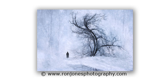 Another nature photograph by Ron Jones Photography