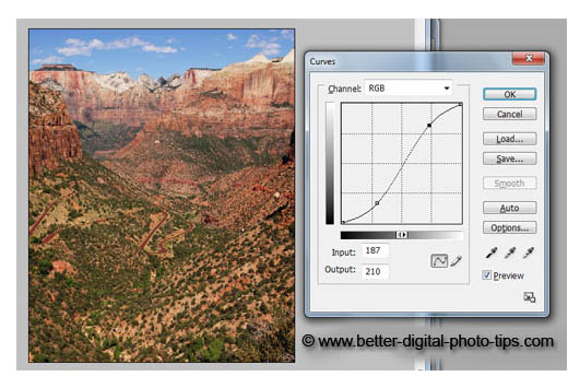 PhotoShop Curves used as a creative technique to enhance the photo