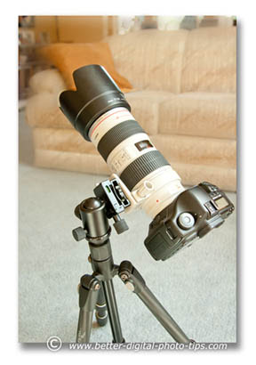 It is a size mis-match but I have used the Rocketfish tripod and my full-sized DSLR and heavy zoom lens without a catastrophe. Be careful if you do