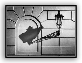 Picture of a lamp and its shadow