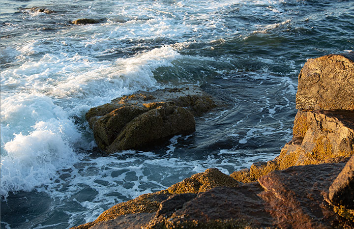 Acadia waves without neutral density