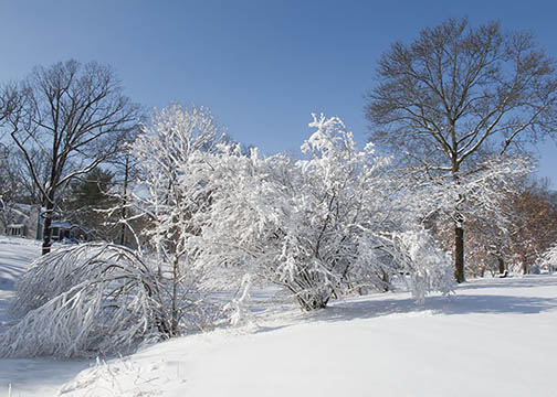 after the snow storm