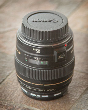 Camera Lens Basics - Helpful Guide to Understanding Camera Lenses