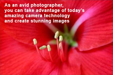 camera technology quote