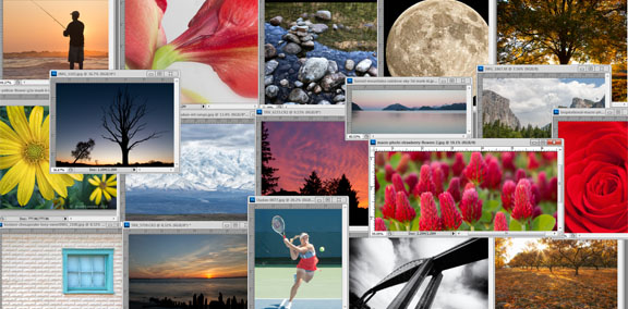 Collection of Photos From the Digital Photography Tips Web Site