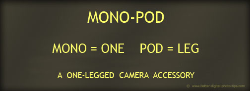 Definition of Monopod Banner