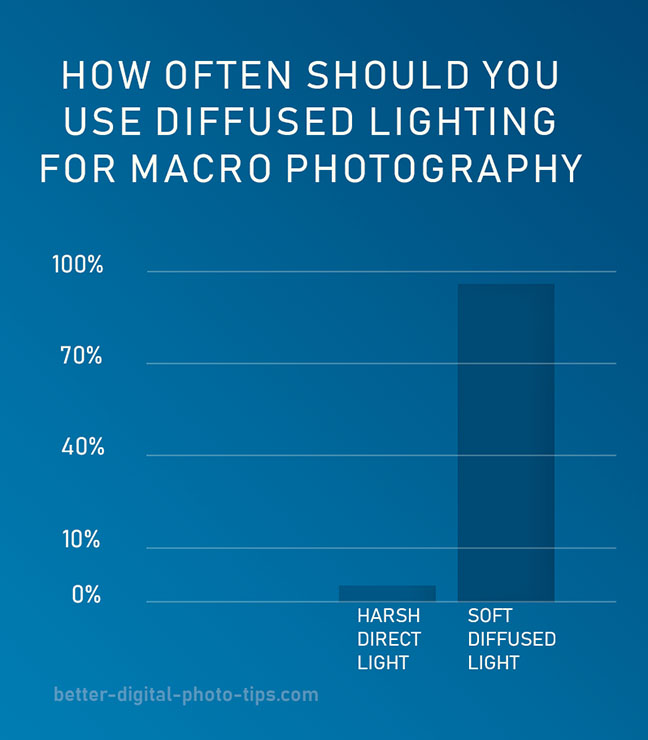 Diffused macro lighting infographic