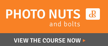 DPS-Nuts and Bolts Video Course