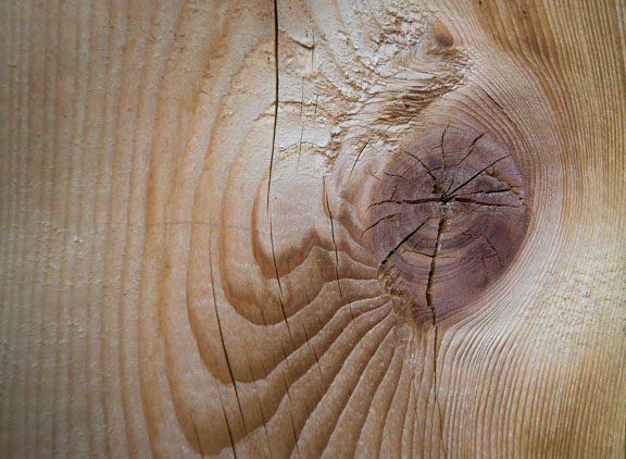 Close-up of knot in wood fence