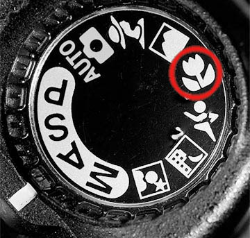 Macro setting on camera mode dial - circled in red