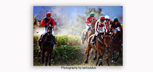 Serious action going on in this picture of racing horses