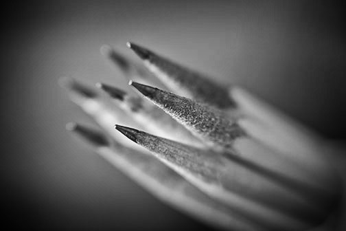 B+W pencil close-up
