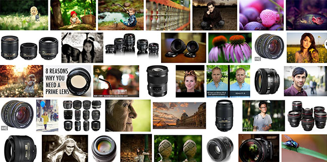 Collage of prime lens photos