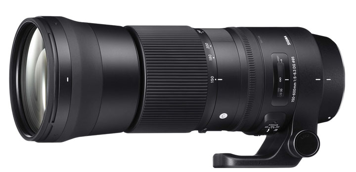 Sigma 150-600 Super Telephoto Zoom Lens