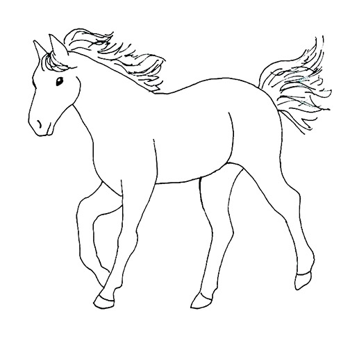 Simple horse drawing
