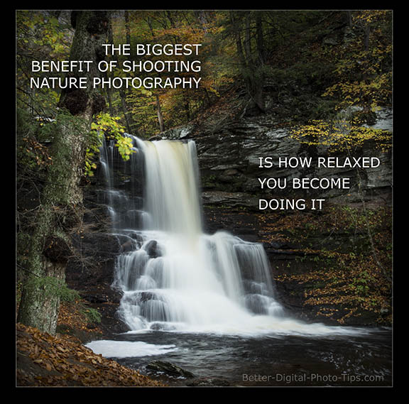 nature photography benefit