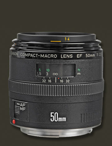 Canon 50mm Close-up Photography Lens