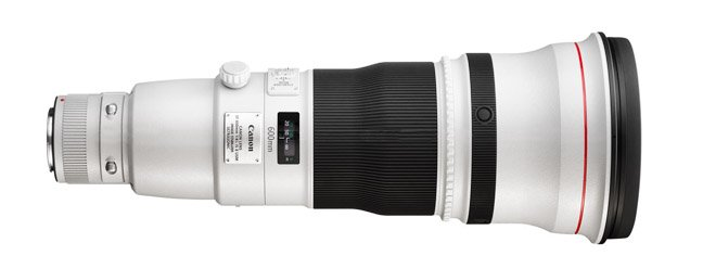 Canon 600mm f/4.0 Lens
