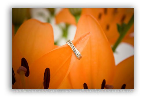 Use of an Engagement Ring to Show Depth of Field Sample Photo