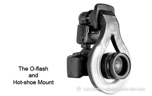 The O-ring Flash