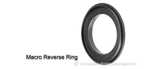 Photo of a simple macro reverse ring