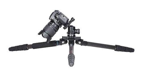 Low profile tripod for macro photography