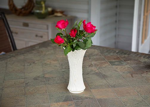Red roses-landscape perspective